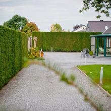 Laurent Lacroix, Parcs & Jardins - Crisnée - Terrasses & Allées